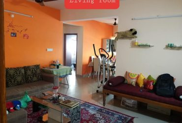 1bhk fully furnished flat for rent at khamla .